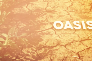 Amir - Oasis