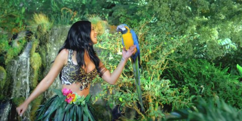 Katy-Perry-Roar-Music-Video-HD-29